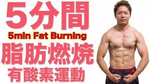 5minfatburning