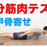 DAY3:肩甲骨寄せ(1分筋肉テスト)のやり方!あなたの体力レベルが分かります! #1分筋肉テスト